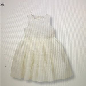 Janie and Jack Shimmer Tulle Dress